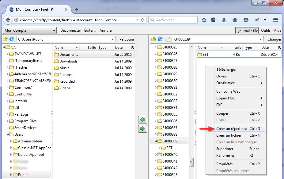FireFTP-Navigation serveur